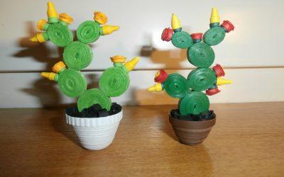Kaktus z papieru – miniaturka